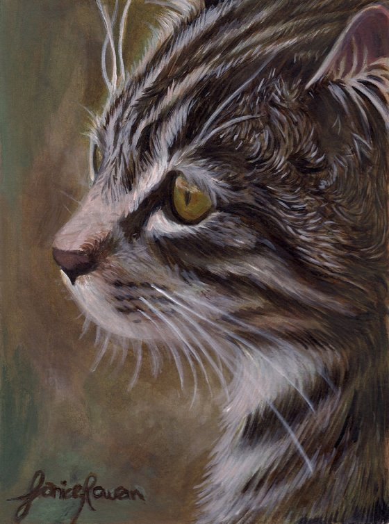 Cat painting by Eternal Drift.