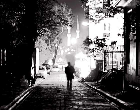 Stranger_In_The_Night_